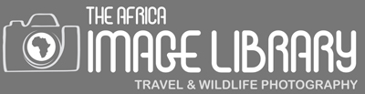 The Africa Image Library_website1.jpg